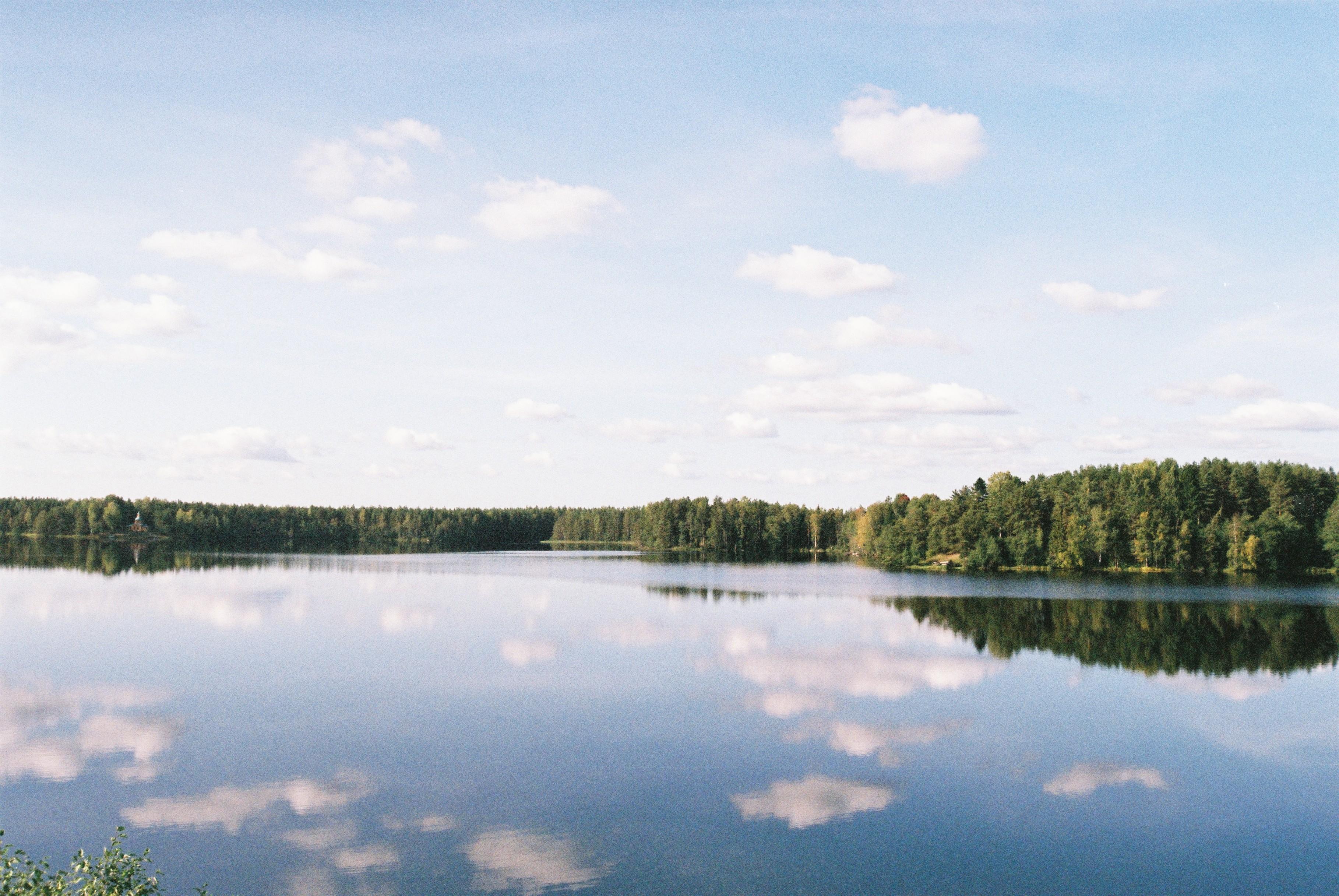На берегу Рощинского озера
