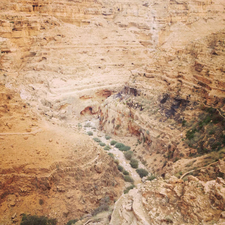 Израильская пустыня